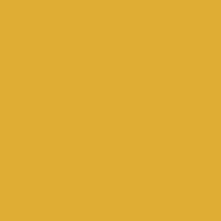 YR31 Dark Yellow