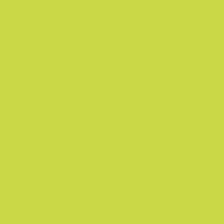 GY48 Yellow Green