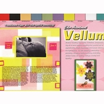 "Color Assortment Vellum Pad 12""x12"""