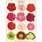 "Cavallini Decorative Paper- Fleurs 20""x28"" Sheet"