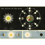 "Cavallini Decorative Paper- Phases of the Moon 20""x28"" Sheet"