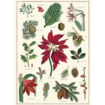 "Cavallini Decorative Paper- Christmas Botanical 20x28"" Sheet"