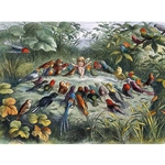 "Richard Doyle Musical Elf - Poster Paper 19.5 x 27.25"" Sheet"