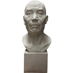 Plaster Cast Male Full Head (Life Size)