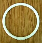Daylight 28 watt Circular Tube Bulb (fits the Daylight Ultraslim Fluorescent Magnifier Lamp)