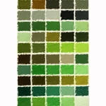 Girault Soft Pastel Sets - Greens Set - Set of 50 Pastels