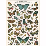 "Cavallini Papers from Italy - Butterfly Chart  20""x28"" Sheet"