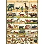 "Cavallini Decorative Paper - Animal Chart 20""x28"" Sheet"