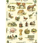 "Cavallini Decorative Paper - La Ferme 20""x28"" Sheet"