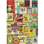 "Cavallini Decorative Paper - Bon Apetite 20""x28"" Sheet"