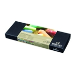 Rembrandt Pastel Set - 30 Half Stick General Selection