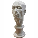 Plaster Cast Perspective Male Head