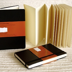 Moleskine Japanese Album 3-1/3 x 5-1/2 (60 Zigzag Folded Pages)