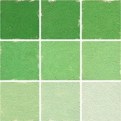 Roche Pastel Values Sets of 9 - Cadmium Green 5690 Series