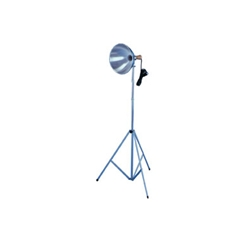 "Testrite Studio Light - A tremendously popular light source for any studio. Includes a 10"" diameter reflector with a 3 section telescopic stand extending up to 7'. Cool wood adjustable handle."