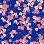 Japanese Patterns & Chiyogami