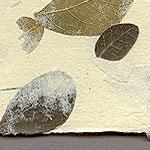 Langdell Paper- Leaves and Fern  - 19x25 Inch Sheet