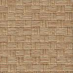 Wide Tan Strips (Backed) 18x24 Inch Sheet