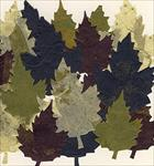 Pack of 20 Blue, Aubergine, Green, and Natural Maple Leaves
