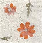 Orange Blossom 17x27 inch sheet