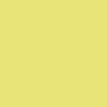 Y38 Pale Yellow