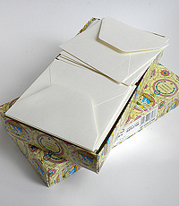 "Box of 100 5""x5"" Envelopes"