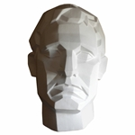 Plaster Cast- Angular Male Face