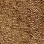 Reptile Paper from India- Desert Gold 22x30 Inch Sheet