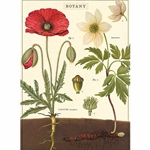 "Cavallini Decorative Paper- Botany 20""x28"" Sheet"