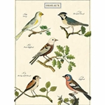 "Cavallini Decorative Paper- Oiseaux Wrap 20""x28"" Sheet"