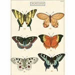 "Cavallini Decorative Paper-Papillons Wrap 20""x28"" Sheet"