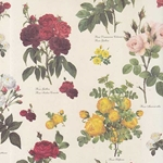 Tassotti Paper- Antique Scatter Roses 19.5x27.5 Inch Sheet