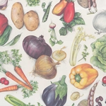 Tassotti Paper- Vegetables 19.5x27.5 Inch Sheet