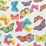 Tassotti Paper- Watercolor Butterfly Collection 19.5x27.5 Inch Sheet