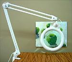 Daylight Ultra Slim Fluorescent Magnifier Lamp