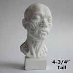 Plaster Casting - Miniature Anatomical Head