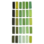 Terry Ludwig Pastels - Warm Greens Set of 30