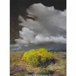 Great American Pastels - Southwest Landscape Set by Paul Murray - 78 Handmade Soft Pastels