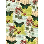 "Cavallini Decorative Paper - Flora & Fauna Butterflies 20""x28"" Sheet"