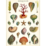"Cavallini Decorative Paper - Marveilles de La Mer 20""x28"" Sheet"