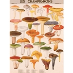 "Cavallini Decorative Paper - Mushrooms 20""x28"" Sheet"