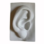 Plaster Cast Ear