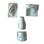 Plaster Cast - Giant Eye, Ear Nose, and Mouth Set
