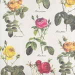 Tassotti Paper- Rose Blossoms 19.5x27.5 Inch Sheet