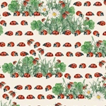 "Tassotti Paper - Coccinelle 19.5"" x 27.5"" Sheet"