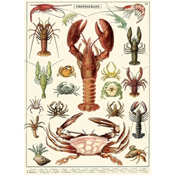 "Cavallini Decorative Paper - Crustaceans 20""x28"" Sheet"