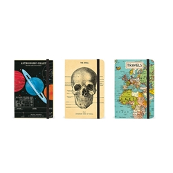 Cavallini Small Notebooks