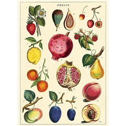 "Cavallini Decorative Paper - Fruit 2 Wrap 20""x28"" Sheet"