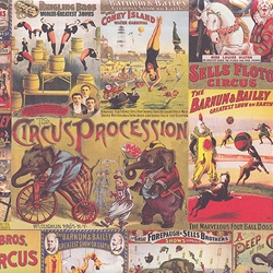 """NEW!"" Rossi Decorated Papers from Italy - Circus 28""x40"" Sheet"
