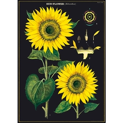 "*NEW!* Cavallini Decorative Paper - Sunflower 20""x28"" Sheet"